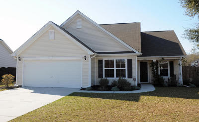 Johns Island Single Family Home For Sale: 2036 Chilhowee Drive