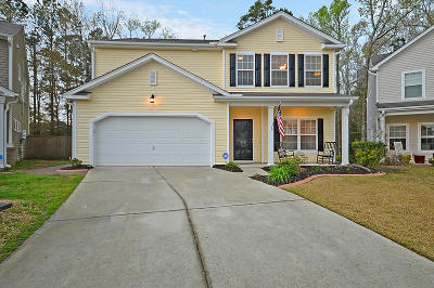Summerville Single Family Home For Sale: 210 Willet Drive
