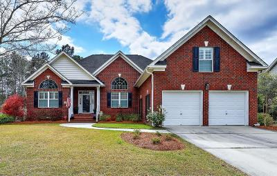 Summerville Single Family Home For Sale: 289 Renau Boulevard