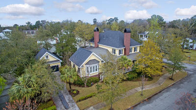 Daniel Island Single Family Home For Sale: 301 Hidden Bottom Lane