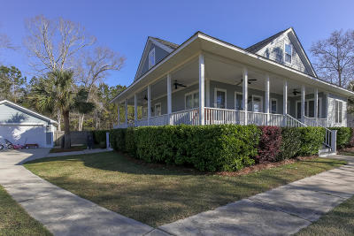 Wadmalaw Island Single Family Home For Sale: 5376 Peerless Drive