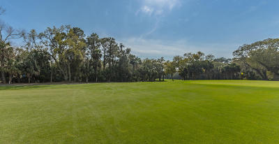 Kiawah Island Residential Lots & Land For Sale: 255 Surfsong Road