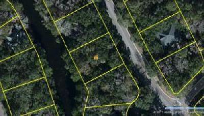 Charleston County Residential Lots & Land For Sale: 2909 Seabrook Island Road