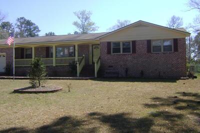 Walterboro Single Family Home For Sale: 399 Chamblee Road