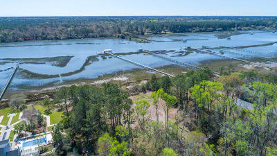 Wadmalaw Island Residential Lots & Land For Sale: 1976 Long Creek Road