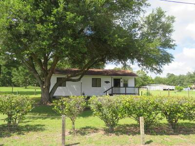 Walterboro Single Family Home For Sale: 76 Danville Lane