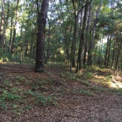 Wadmalaw Island Residential Lots & Land For Sale: 2348 S Rockland Avenue