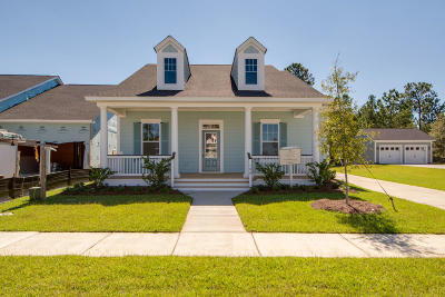 Summerville Single Family Home Contingent: 180 Callibluff Drive
