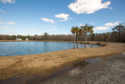 Awendaw Residential Lots & Land Contingent: 1196 Hitchfield Lane