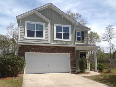 Johns Island Single Family Home For Sale: 2047 Chilhowee Drive