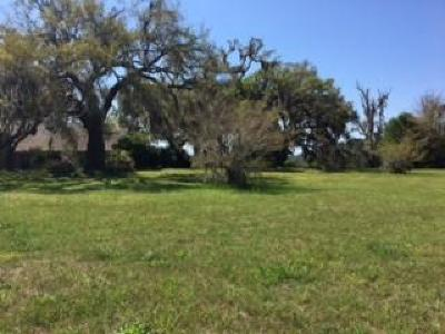 Wadmalaw Island Residential Lots & Land For Sale: 6024 Selkirk Plantation Rd