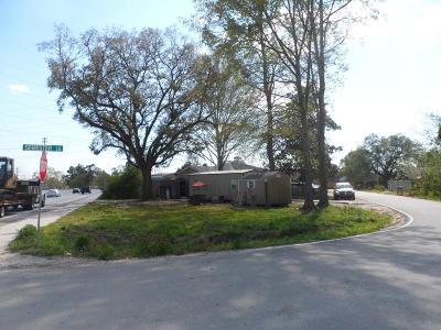 Summerville Single Family Home For Sale: 129 Semester Lane
