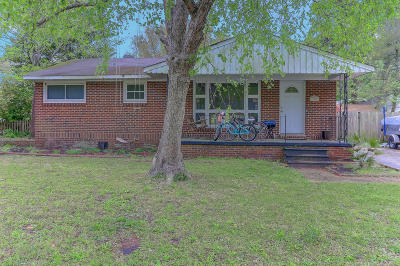 Mount Pleasant Single Family Home For Sale: 1489 Indian Street