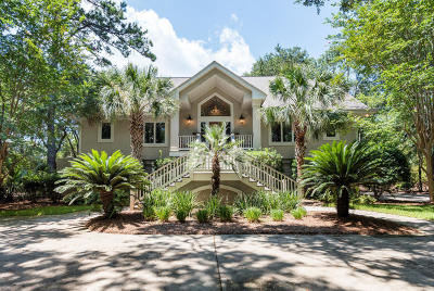 Johns Island Single Family Home For Sale: 2556 Clear Marsh Road