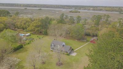 Johns Island Single Family Home For Sale: 5536 Stonoview Drive