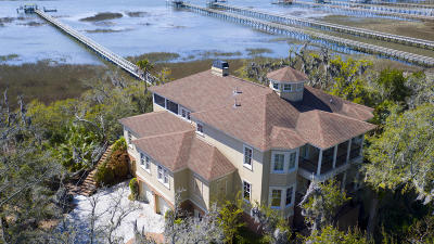 Berkeley County, Charleston County, Colleton County, Dorchester County Single Family Home For Sale: 101 White Salt Lane