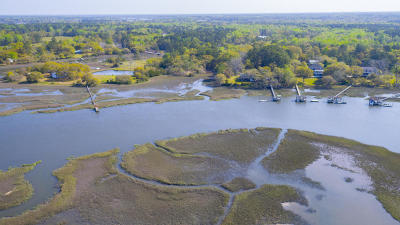 Johns Island Residential Lots & Land For Sale: 5080 Chisolm Road