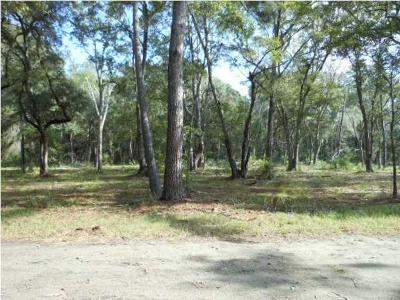Edisto Island SC Residential Lots & Land For Sale: $43,000