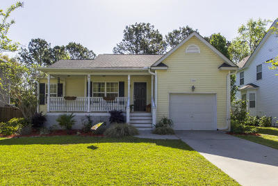 Johns Island Single Family Home For Sale: 3066 Penny Lane