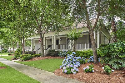 Charleston Single Family Home For Sale: 393 Ralston Creek Street
