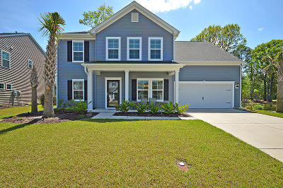 Charleston Single Family Home For Sale: 615 Pasdalum Court