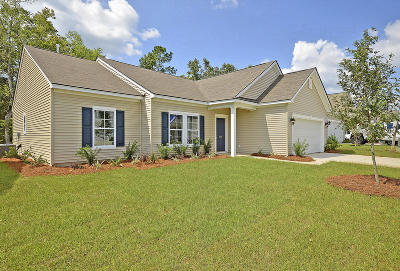 Goose Creek Single Family Home For Sale: 540 Mountain Laurel Court