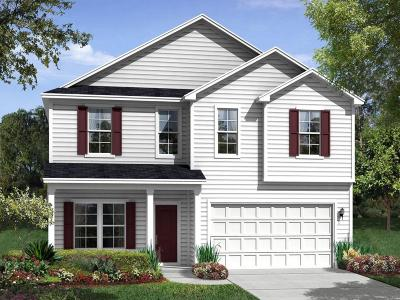Goose Creek Single Family Home For Sale: 115 Levis Song Court