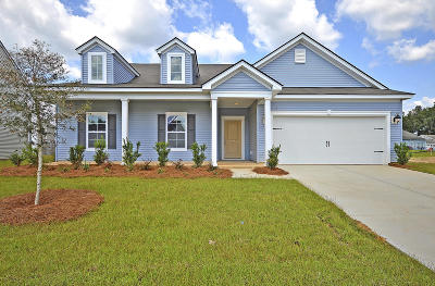 Goose Creek Single Family Home For Sale: 107 Levis Song Court