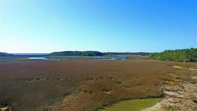 Charleston Residential Lots & Land For Sale: 153 Nobles Point Street