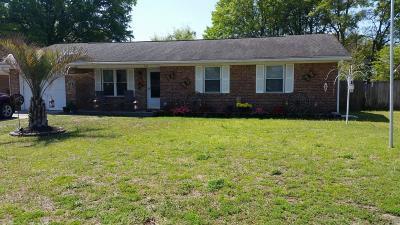 Summerville Single Family Home For Sale: 133 E Edgefield Drive