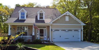 Mount Pleasant Single Family Home For Sale: 1205 Shingleback Drive