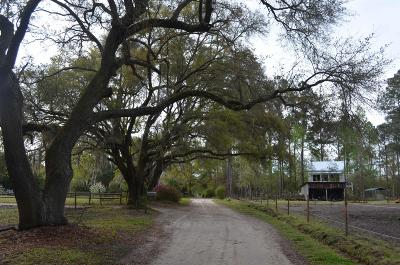Charleston County Residential Lots & Land For Sale: 812 Old Cemetery Road