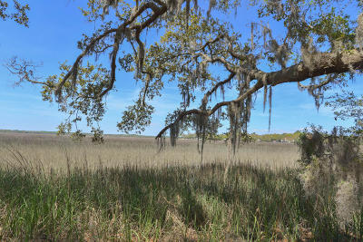 Edisto Island SC Residential Lots & Land For Sale: $104,900