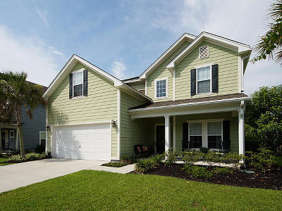 Charleston Single Family Home For Sale: 233 Nelliefield Creek Drive