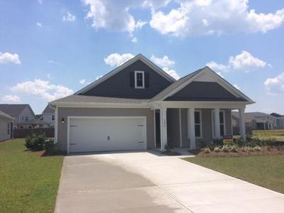 Johns Island Single Family Home For Sale: 1254 Hammrick Lane