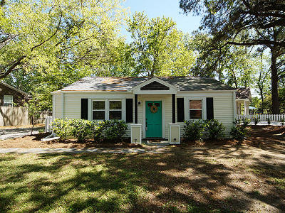 Charleston Single Family Home For Sale: 738 Anita Drive