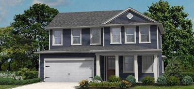 Single Family Home For Sale: 193 Pickens Street #(Lot # 9