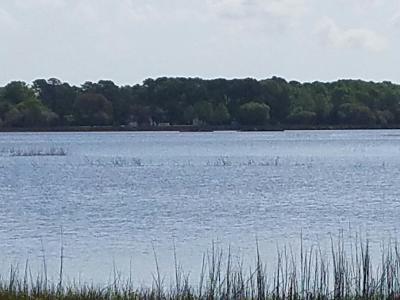 Charleston County Residential Lots & Land For Sale: Lot 94-B Lady Banks Lane