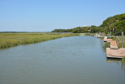 Edisto Island SC Residential Lots & Land For Sale: $298,500