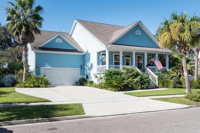 Mount Pleasant, Isle Of Palms, Daniel Island, Awendaw Single Family Home For Sale: 2243 Sandy Point Lane