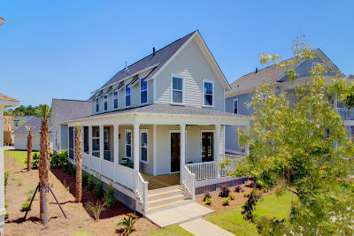 Mount Pleasant Single Family Home For Sale: 1588 Cranes Nest Road