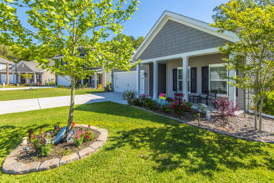 Mount Pleasant Single Family Home For Sale: 2036 Welsh Pony Drive