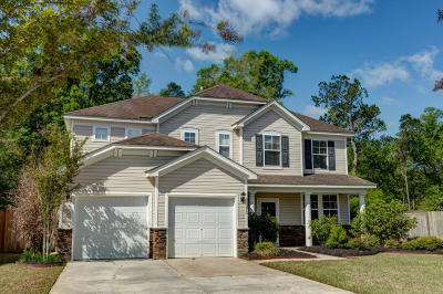 Summerville Single Family Home For Sale: 670 Grassy Hill Road