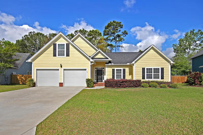 Charleston Single Family Home For Sale: 1181 Rivers Reach Drive