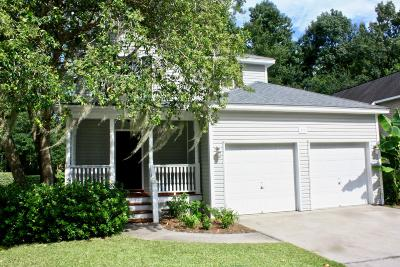 Charleston Single Family Home For Sale: 373 Stefan Drive