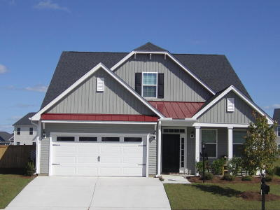 Moncks Corner Single Family Home For Sale: 217 Brunners Lane