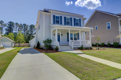 Ravenel Single Family Home For Sale: 4226 Home Town Lane