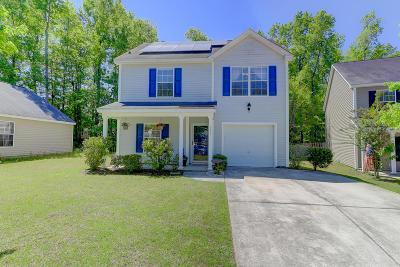 Summerville Single Family Home For Sale: 131 Ducane Street