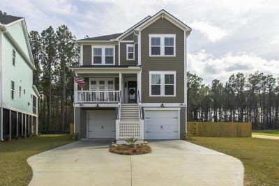 Charleston Single Family Home For Sale: 538 Amalie Farms Drive