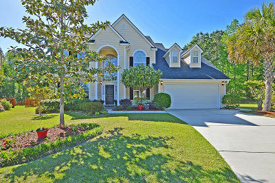 Single Family Home For Sale: 4100 Meadow Trace Ct.